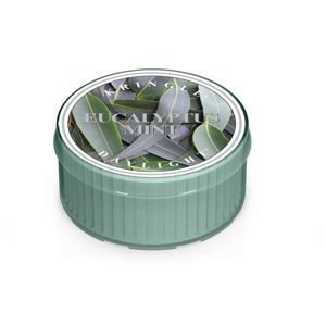 KRINGLE CANDLE  Świeczka Coloured Daylight EUCALYPTUS MINT