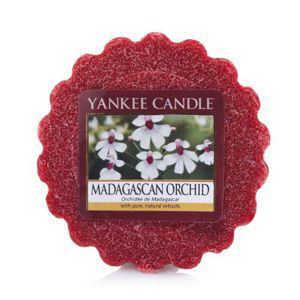 Madagascan Orchid - WOSK Yankee Candle