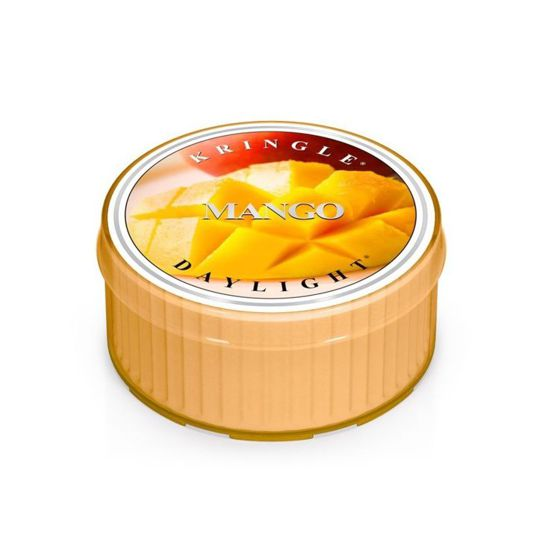 KRINGLE CANDLE Świeczka Coloured Daylight MANGO