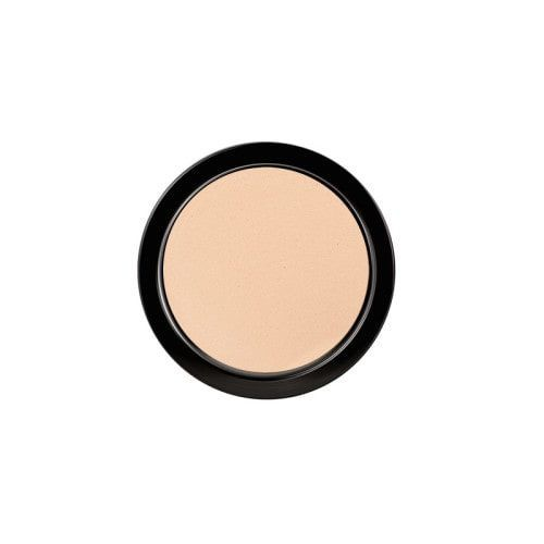 Paese Artist Puder Long Cover Powder 20