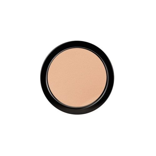 Paese Artist Puder Long Cover Powder 30