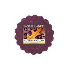 Autumn Glow - WOSK Yankee Candle